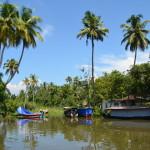 Заводи в Керале